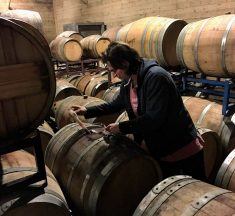 Long Island's Jamesport Vineyards is a Must-Visit Winery Again