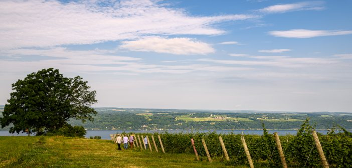 Summer 2019 Finger Lakes Tasting Report