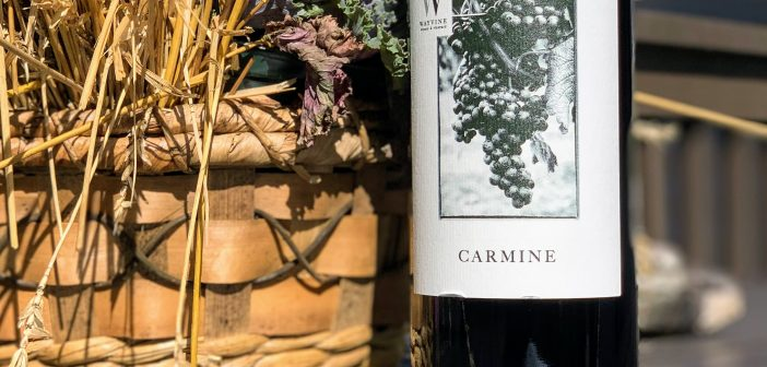 REVIEW: WayVine Winery & Vineyard 2016 Carmine