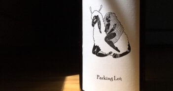 "REVIEW: Liten Buffel 2017 ""Parking Lot;"" Pinot Noir"